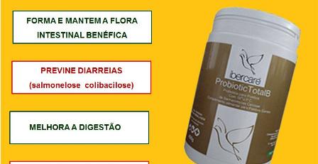 pombos - produtos para pombos - produtos para columbofilia